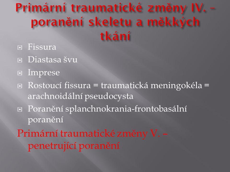 Primární traumatické změny IV. – poranění skeletu a měkkých tkání