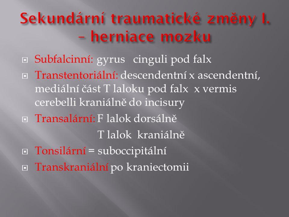 Sekundární traumatické změny I. – herniace mozku