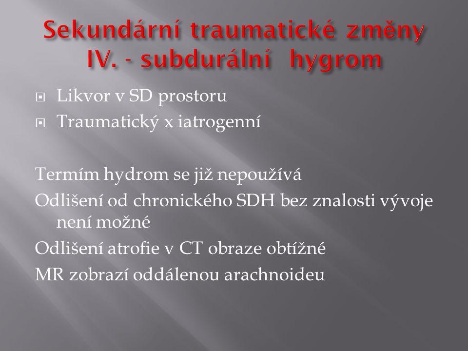 Sekundární traumatické změny IV. - subdurální hygrom