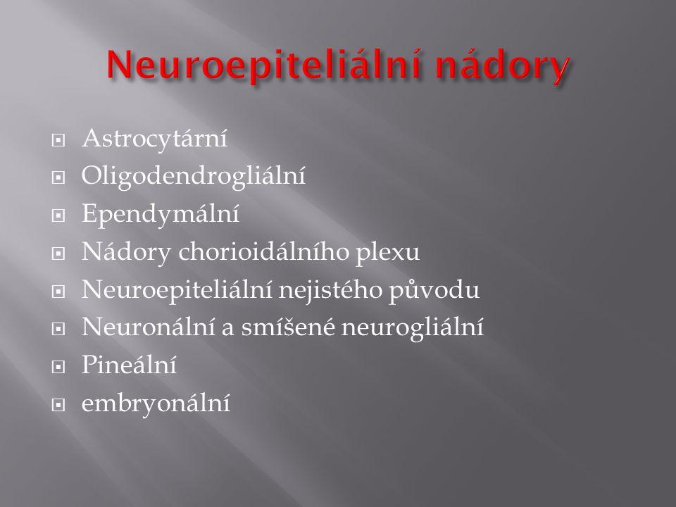Neuroepiteliální nádory