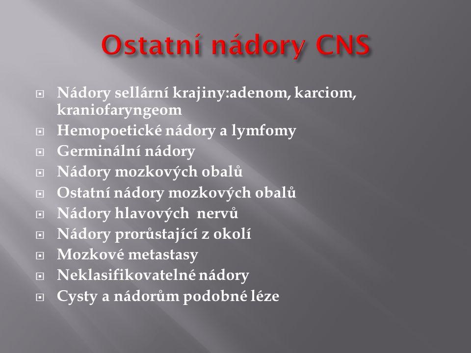 Ostatní nádory CNS Nádory sellární krajiny:adenom, karciom, kraniofaryngeom. Hemopoetické nádory a lymfomy.