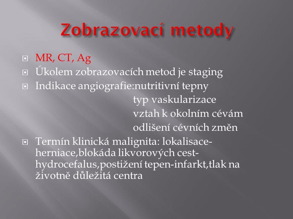 Zobrazovací metody MR, CT, Ag Úkolem zobrazovacích metod je staging