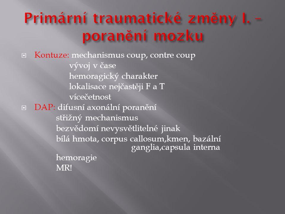 Primární traumatické změny I. – poranění mozku