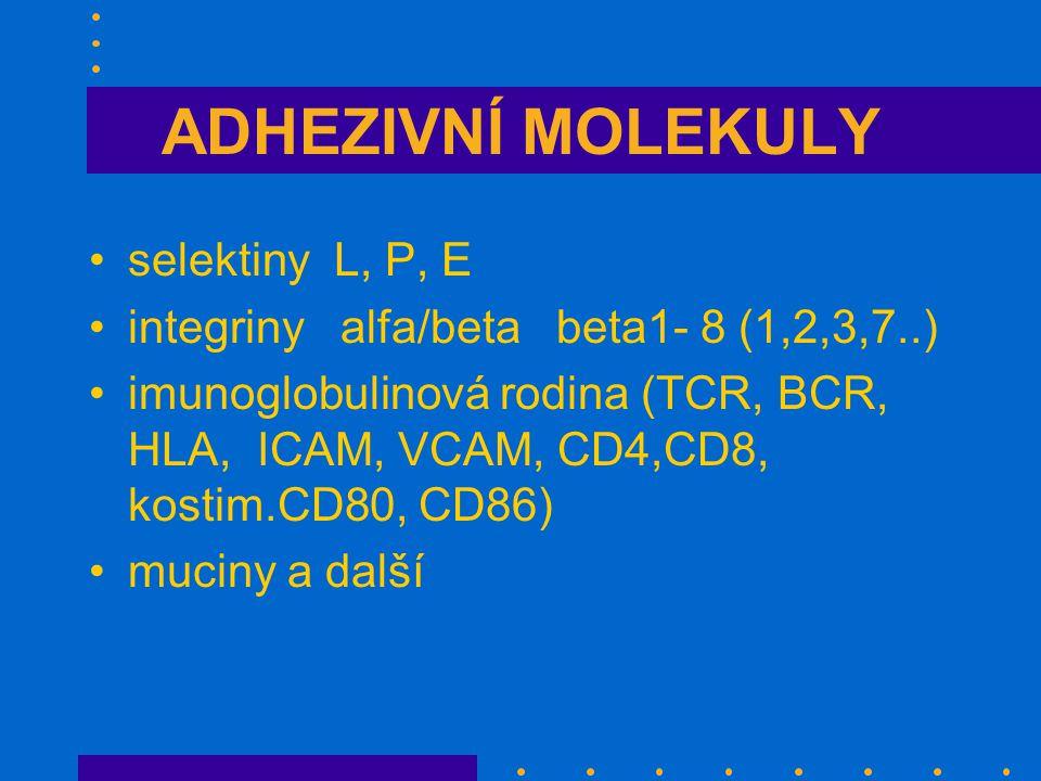 ADHEZIVNÍ MOLEKULY selektiny L, P, E