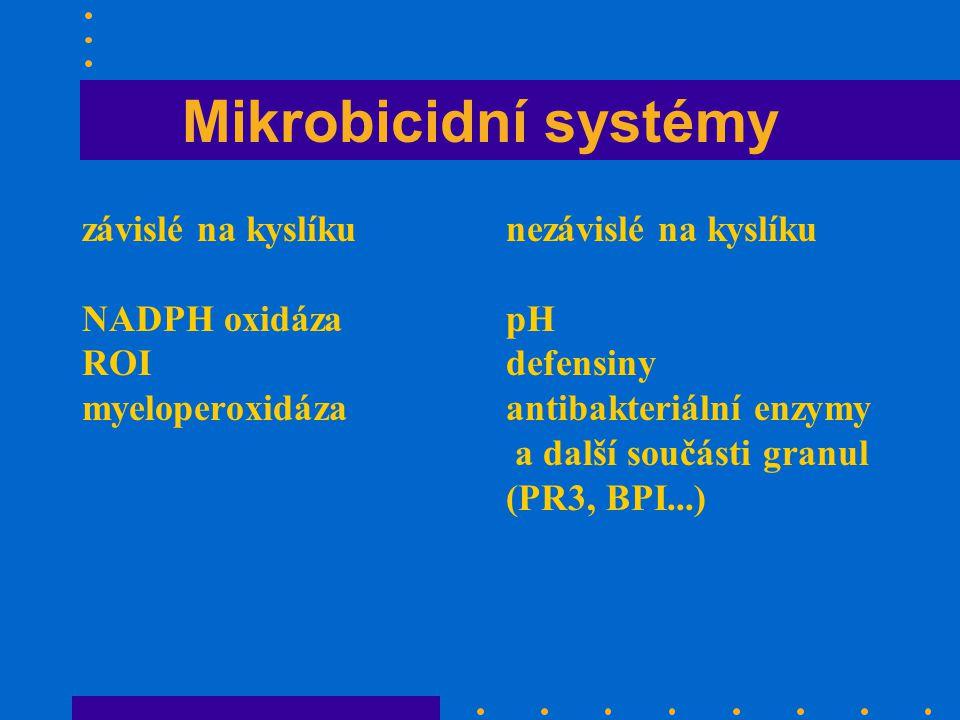 Mikrobicidní systémy závislé na kyslíku NADPH oxidáza ROI