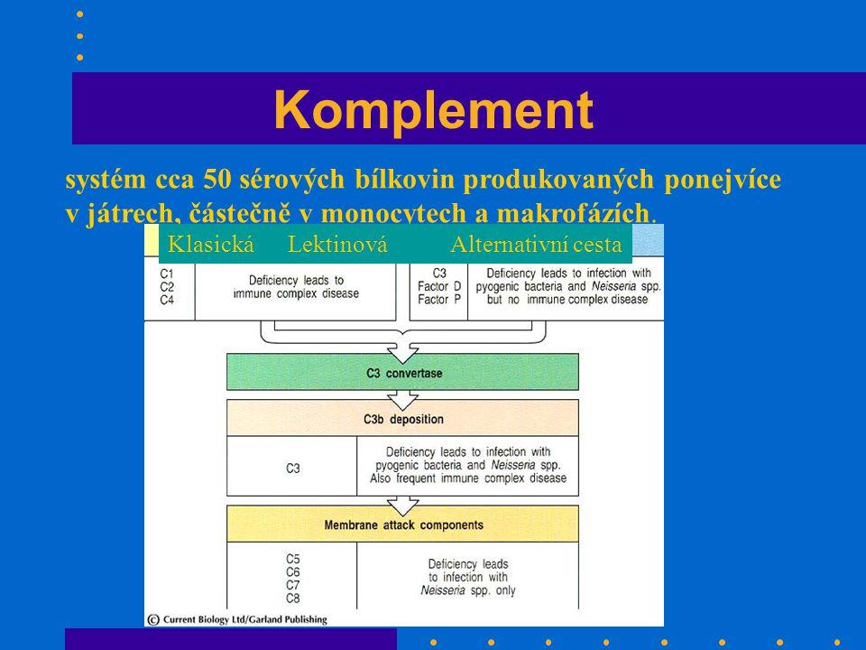 Komplement systém cca 50 sérových bílkovin produkovaných ponejvíce