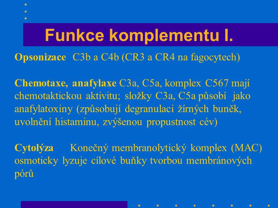 Funkce komplementu I. Opsonizace C3b a C4b (CR3 a CR4 na fagocytech)