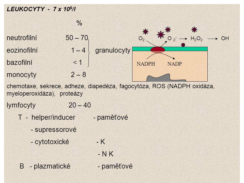 % neutrofilní 50 – 70 O2 O 2- H2O2 OH eozinofilní 1 – 4 granulocyty
