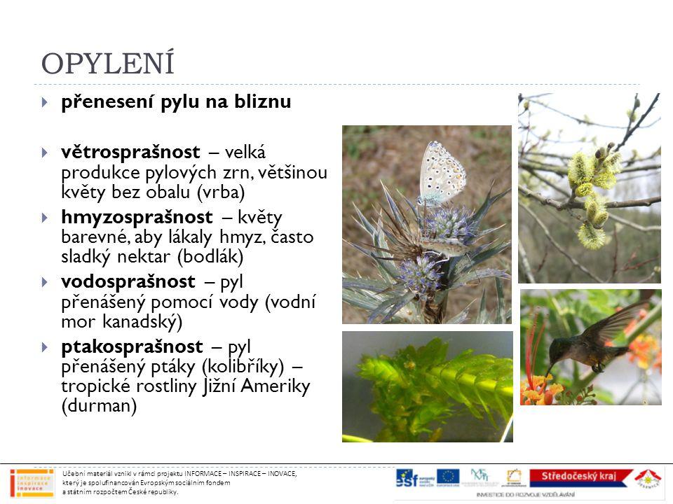 OPYLENÍ přenesení pylu na bliznu