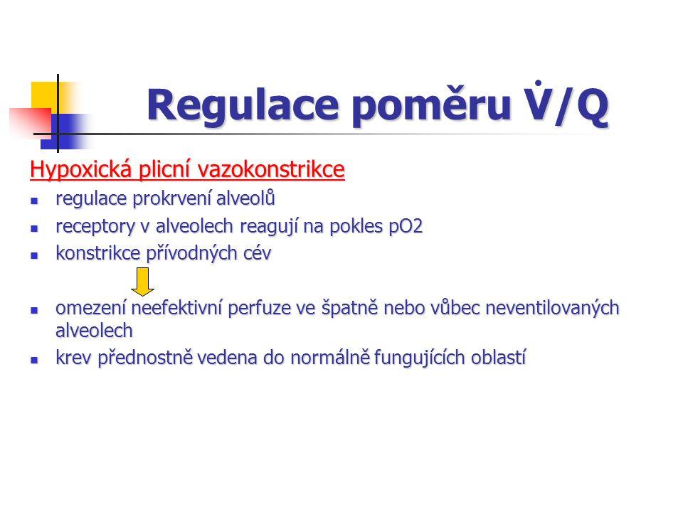 Regulace poměru V/Q Hypoxická plicní vazokonstrikce