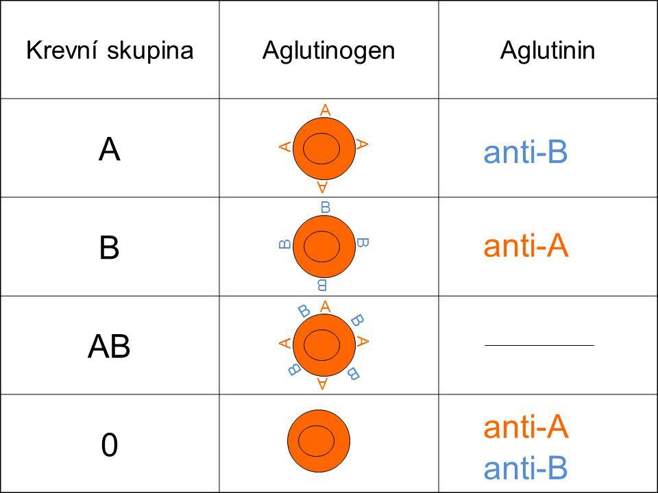A B anti-B AB anti-A anti-A anti-B Krevní skupina Aglutinogen