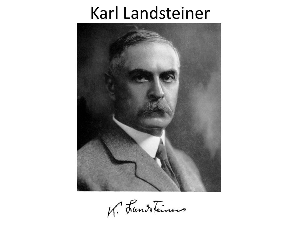 Karl Landsteiner autor: neznámý