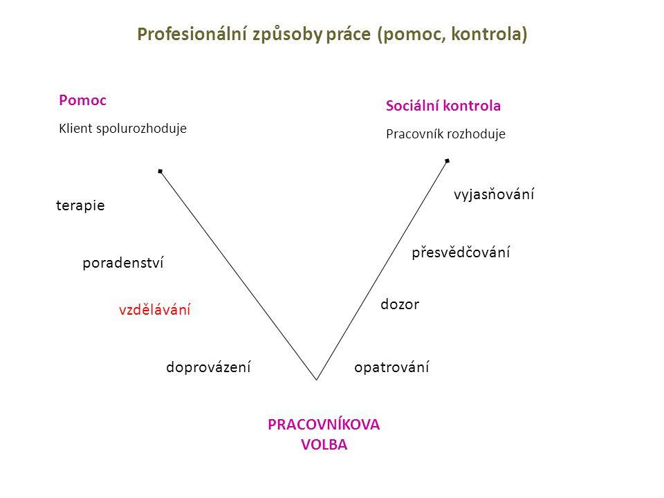 Profesionální způsoby práce (pomoc, kontrola)