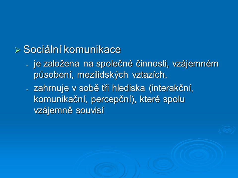 Sociální komunikace je založena na společné činnosti, vzájemném působení, mezilidských vztazích.