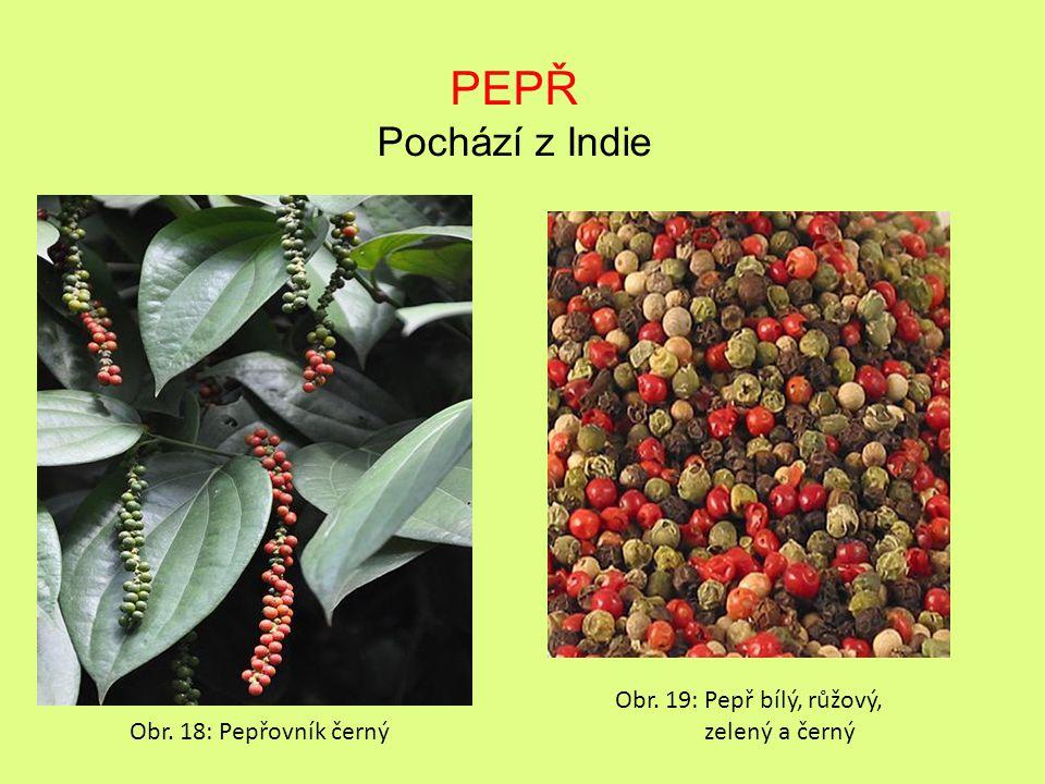 PEPŘ Pochází z Indie Obr. 19: Pepř bílý, růžový, zelený a černý