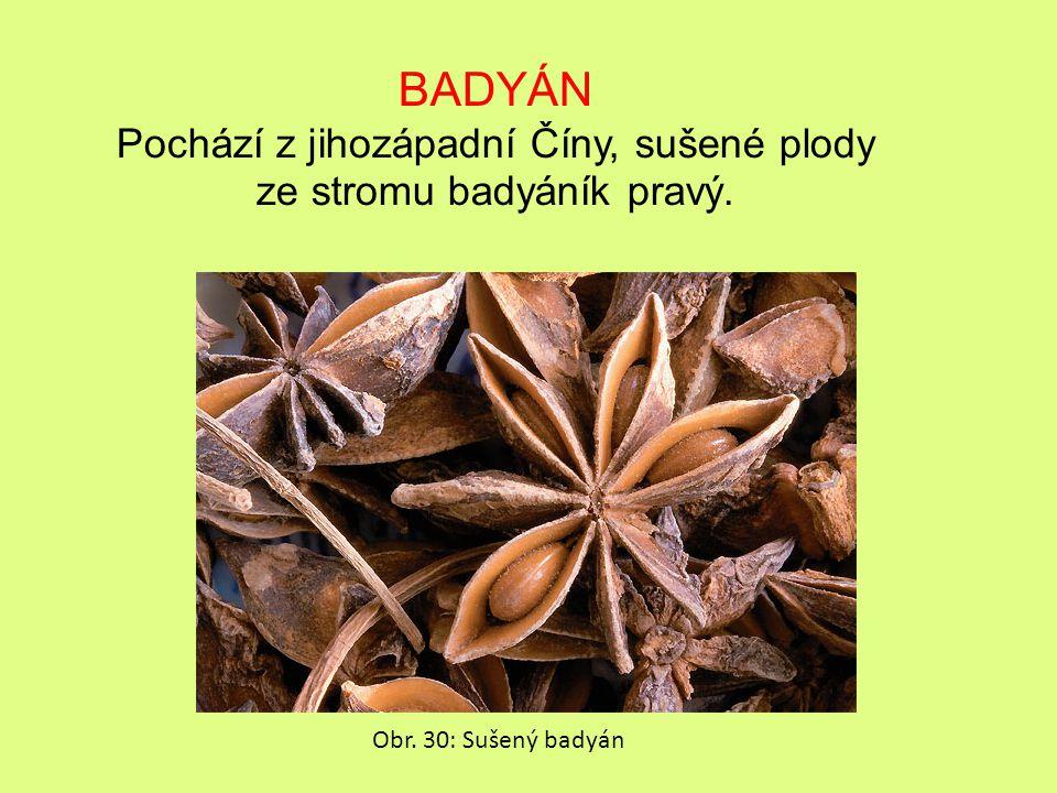 Pochází z jihozápadní Číny, sušené plody ze stromu badyáník pravý.