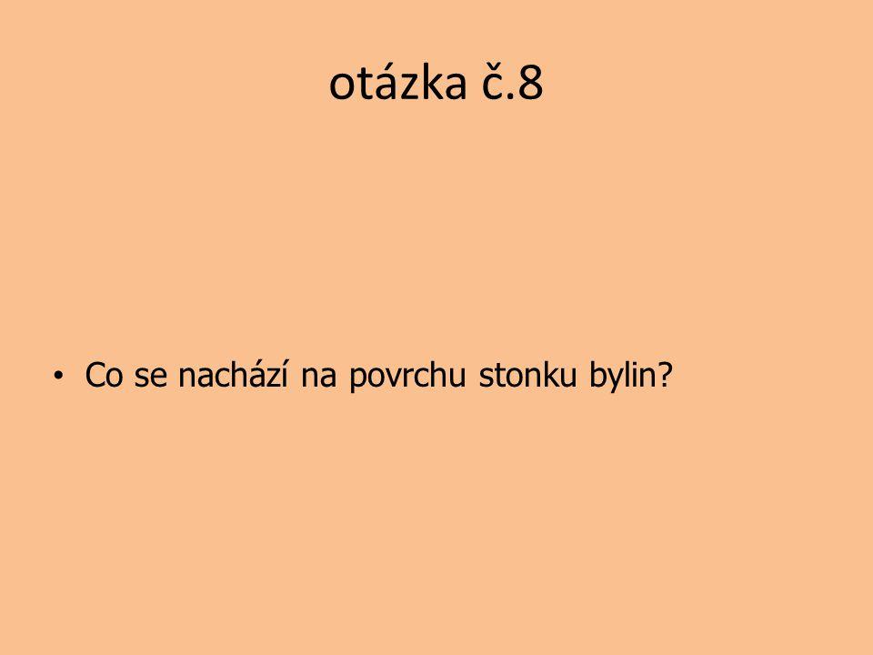otázka č.8 Co se nachází na povrchu stonku bylin
