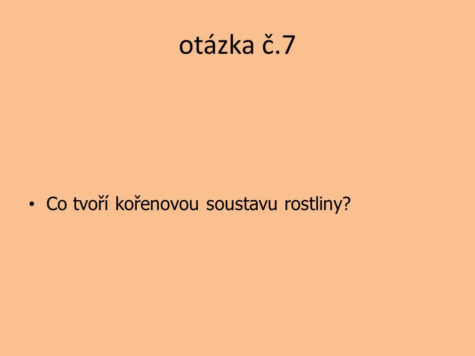 otázka č.7 Co tvoří kořenovou soustavu rostliny