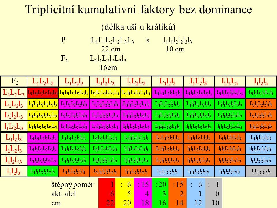 Triplicitní kumulativní faktory bez dominance