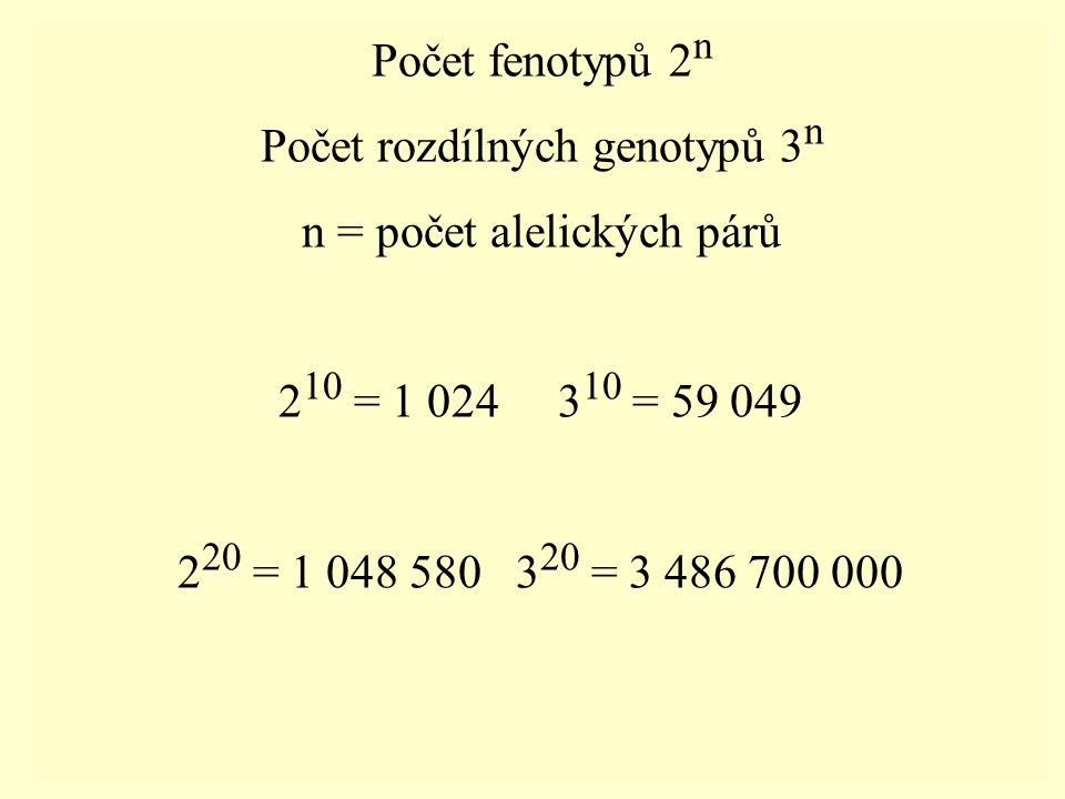 Počet rozdílných genotypů 3n n = počet alelických párů