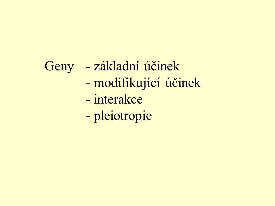 Geny - základní účinek - modifikující účinek - interakce - pleiotropie