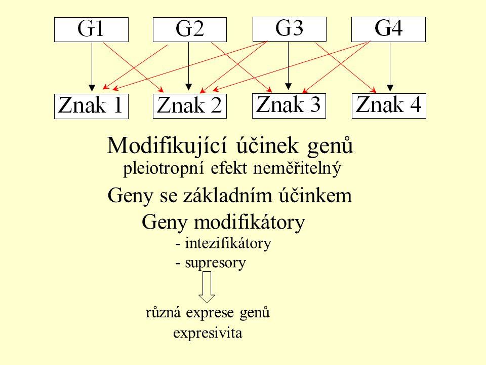 Modifikující účinek genů