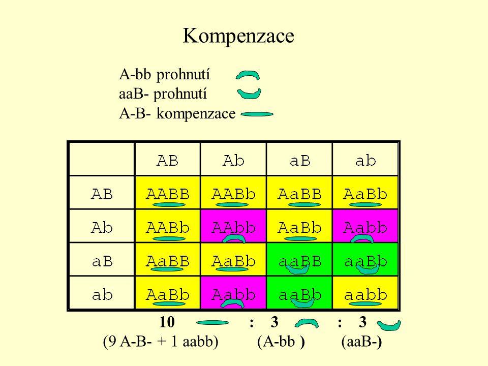 Kompenzace A-bb prohnutí aaB- prohnutí A-B- kompenzace 10