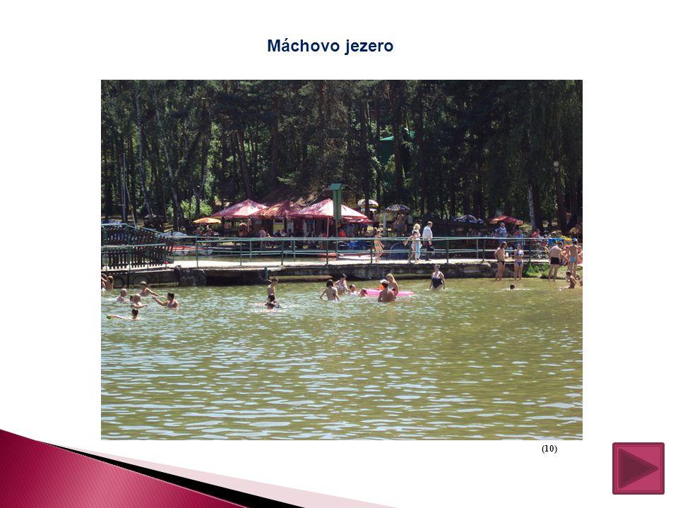 Máchovo jezero (10)