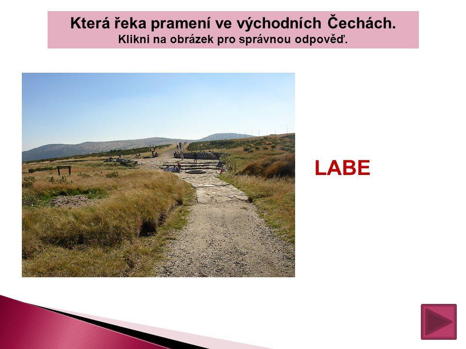 LABE Která řeka pramení ve východních Čechách.
