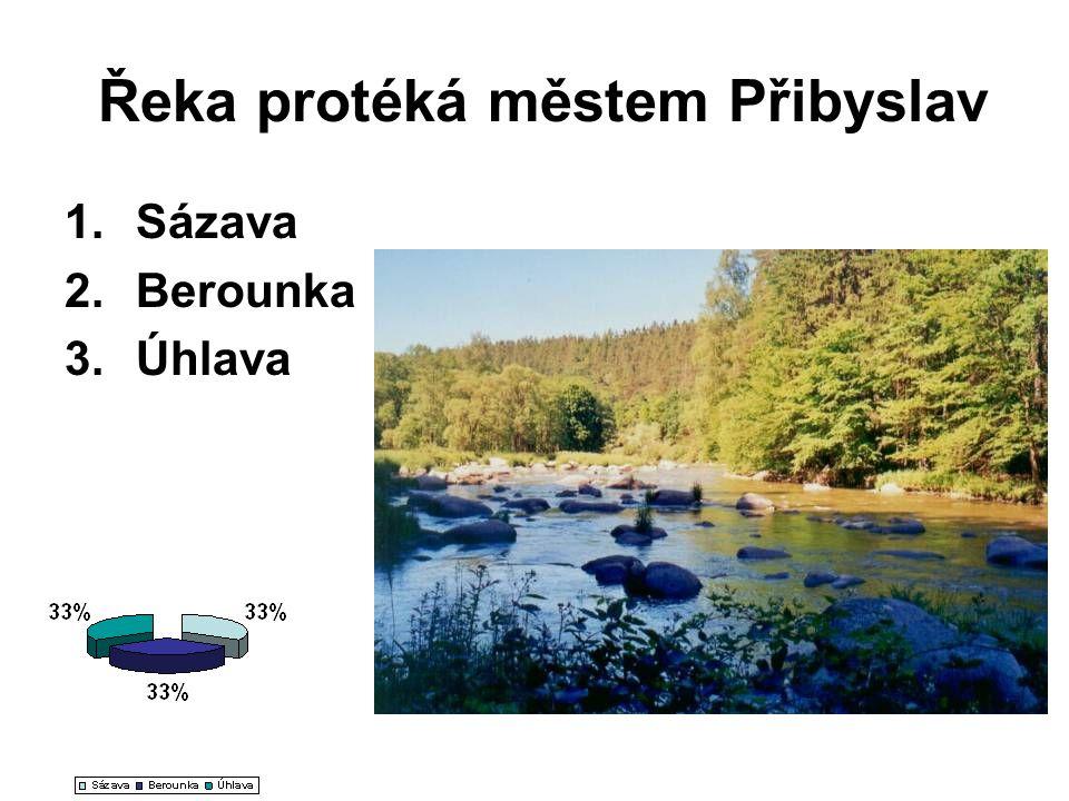 Řeka protéká městem Přibyslav