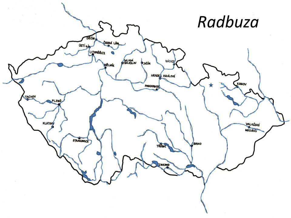 Radbuza