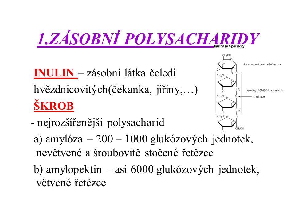 1.ZÁSOBNÍ POLYSACHARIDY