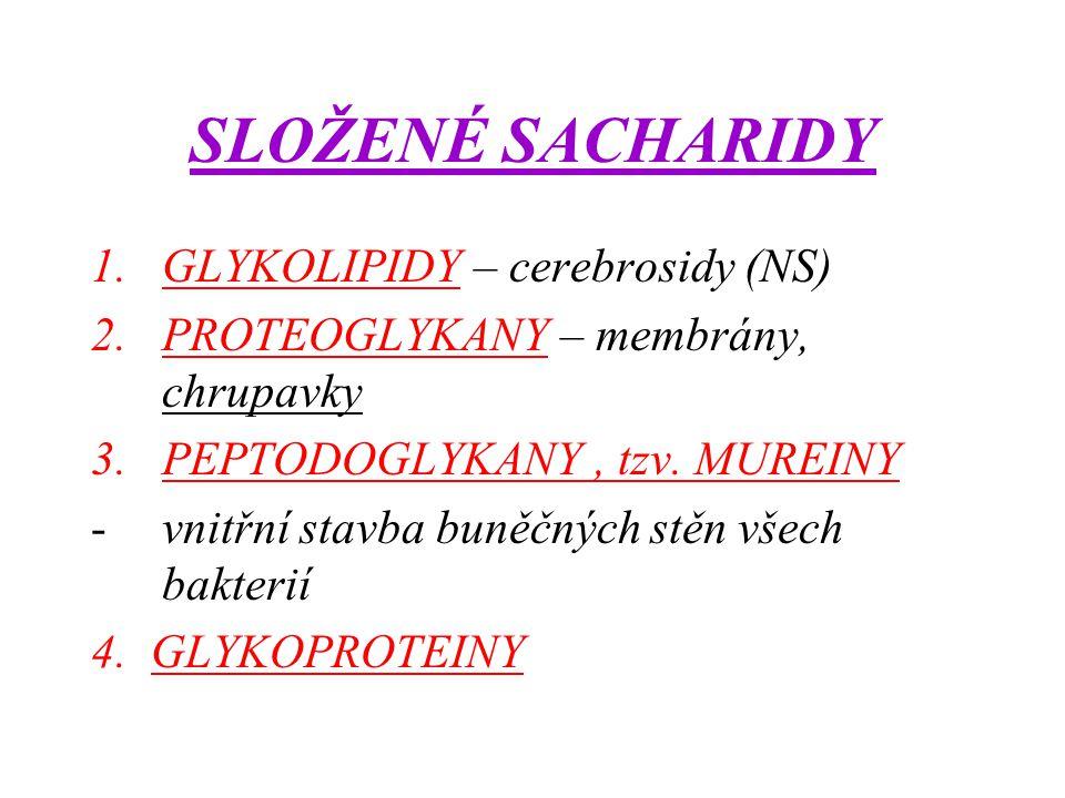 SLOŽENÉ SACHARIDY GLYKOLIPIDY – cerebrosidy (NS)