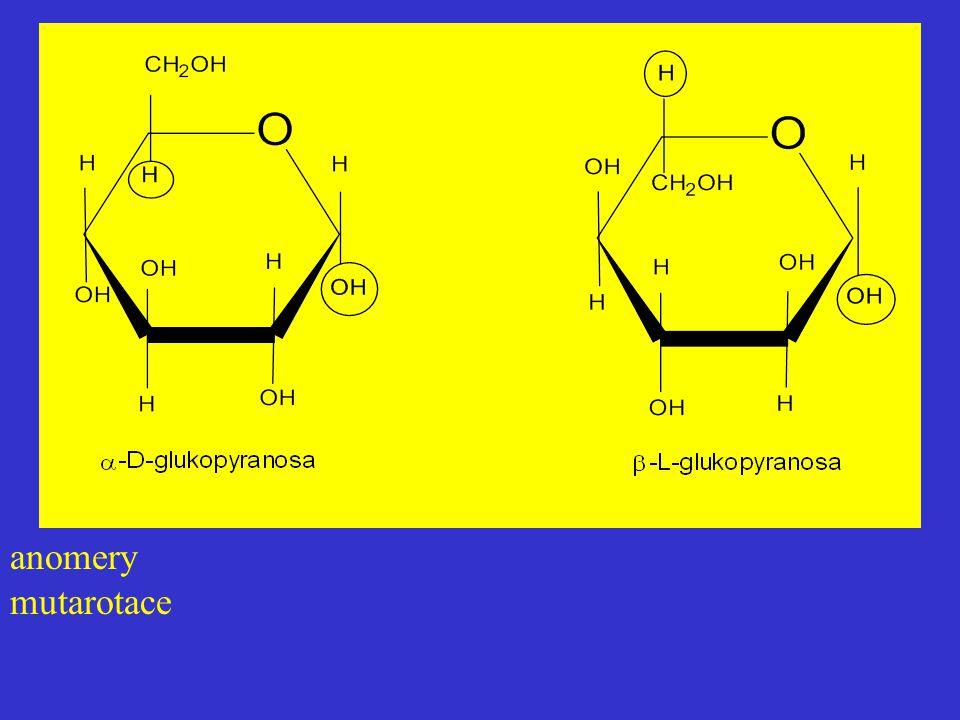 anomery mutarotace