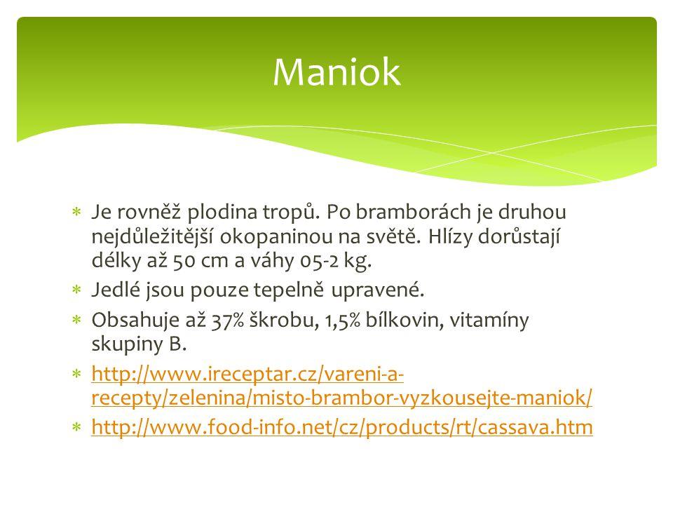 Maniok Je rovněž plodina tropů. Po bramborách je druhou nejdůležitější okopaninou na světě. Hlízy dorůstají délky až 50 cm a váhy 05-2 kg.