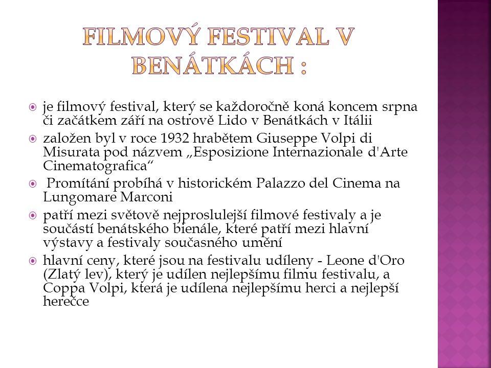 Filmový festival v Benátkách :