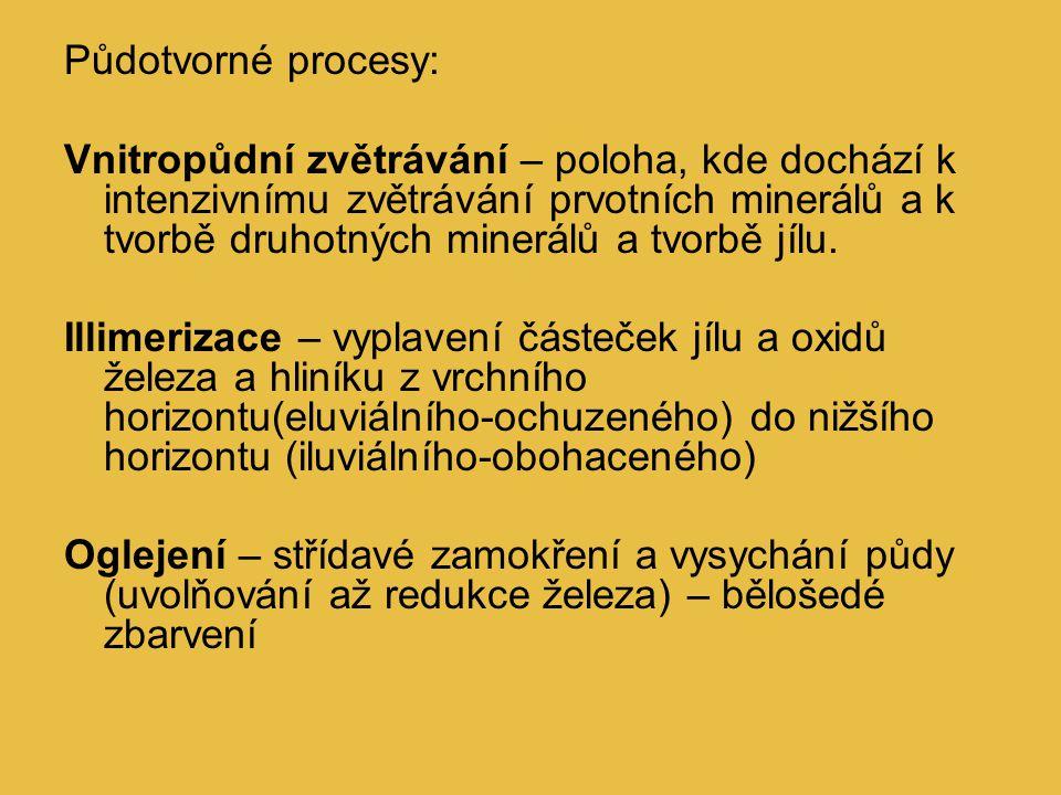 Půdotvorné procesy: