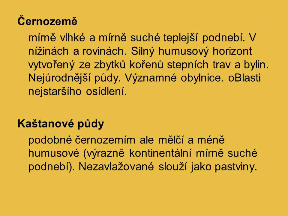 Černozemě