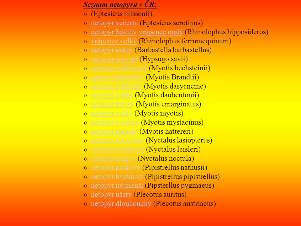 Seznam netopýrů v ČR: (Eptesicus nilssonii) netopýr večerní (Eptesicus serotinus) netopýr Saviův vrápenec malý (Rhinolophus hipposideros)