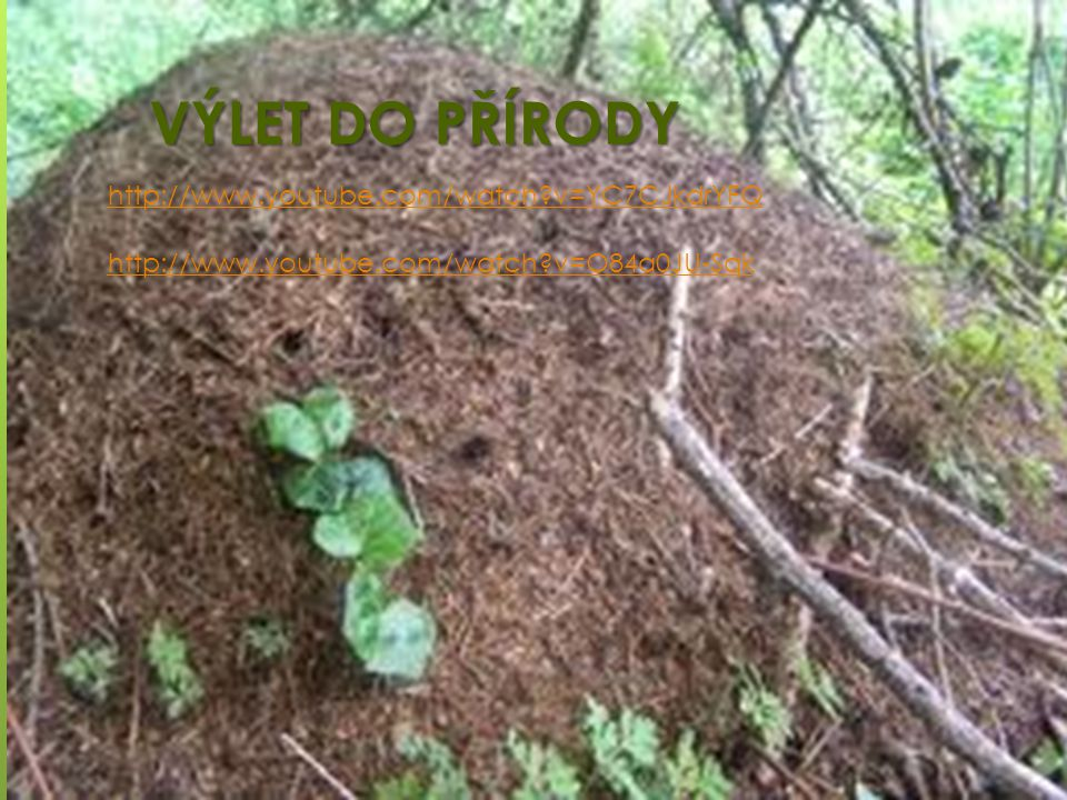 VÝLET DO PŘÍRODY http://www.youtube.com/watch v=YC7CJkdrYFQ