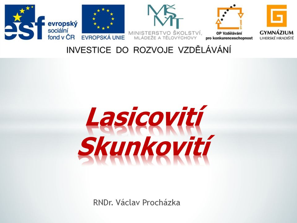 Lasicovití Skunkovití