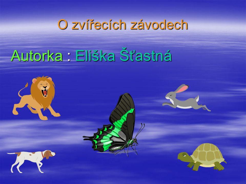 Autorka : Eliška Šťastná