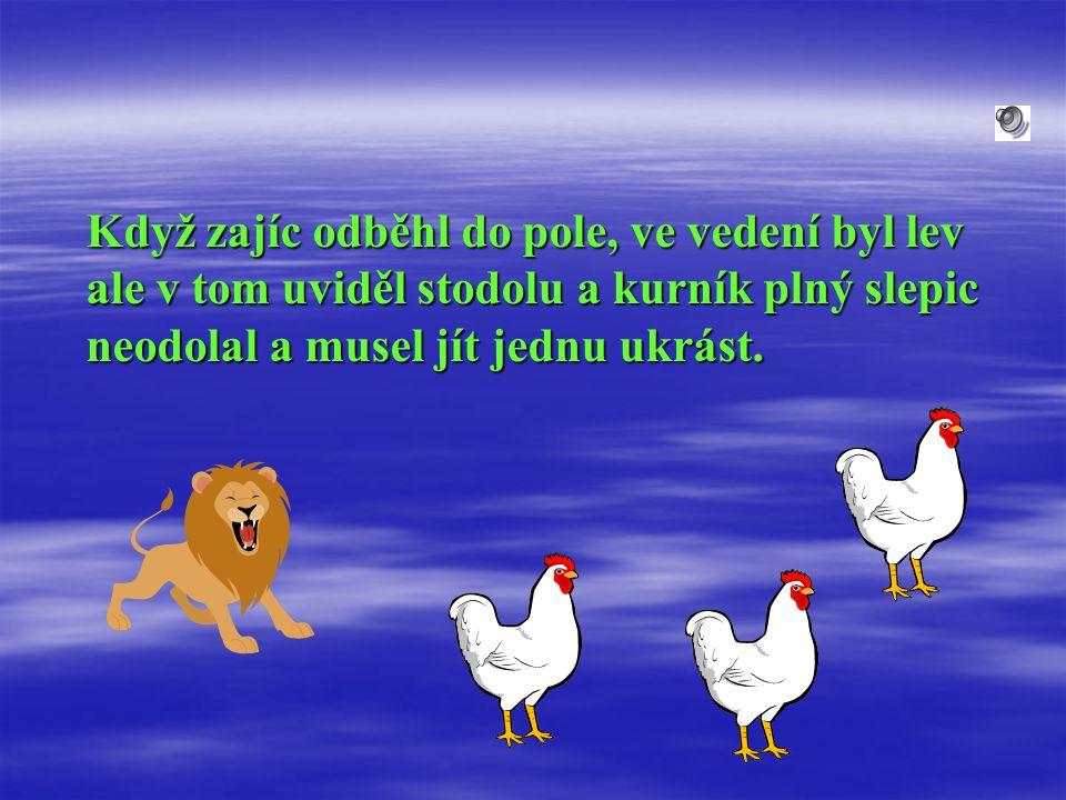 Když zajíc odběhl do pole, ve vedení byl lev ale v tom uviděl stodolu a kurník plný slepic neodolal a musel jít jednu ukrást.