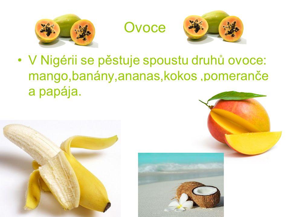 Ovoce V Nigérii se pěstuje spoustu druhů ovoce: mango,banány,ananas,kokos ,pomeranče a papája.