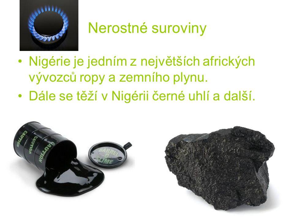 Nerostné suroviny Nigérie je jedním z největších afrických vývozců ropy a zemního plynu.