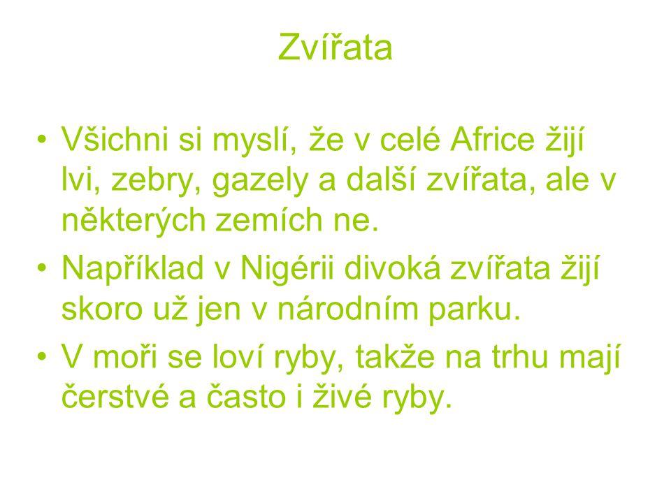 Zvířata Všichni si myslí, že v celé Africe žijí lvi, zebry, gazely a další zvířata, ale v některých zemích ne.