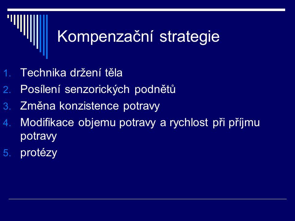 Kompenzační strategie