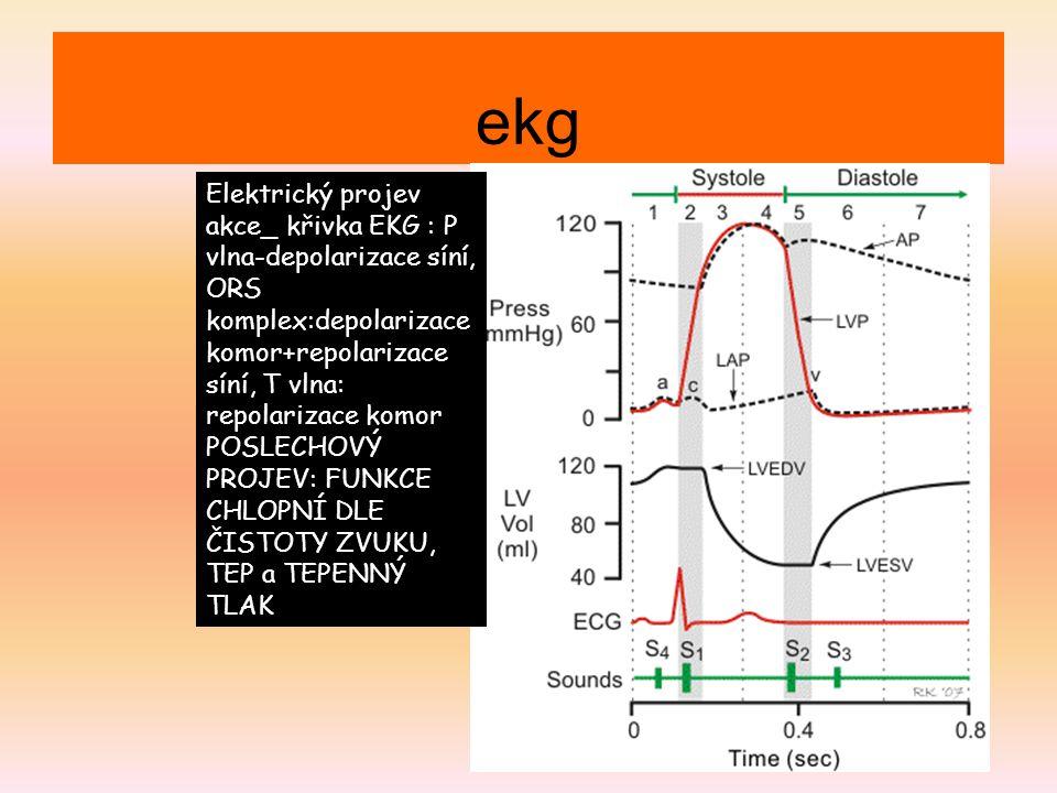 ekg Elektrický projev akce_ křivka EKG : P vlna-depolarizace síní, ORS komplex:depolarizace komor+repolarizace síní, T vlna: repolarizace komor.