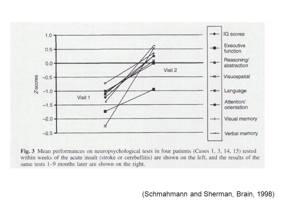 (Schmahmann and Sherman, Brain, 1998)
