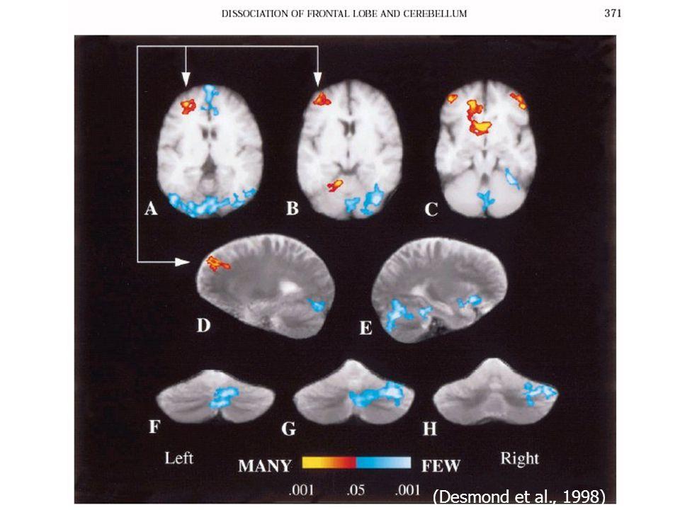 (Desmond et al., 1998)